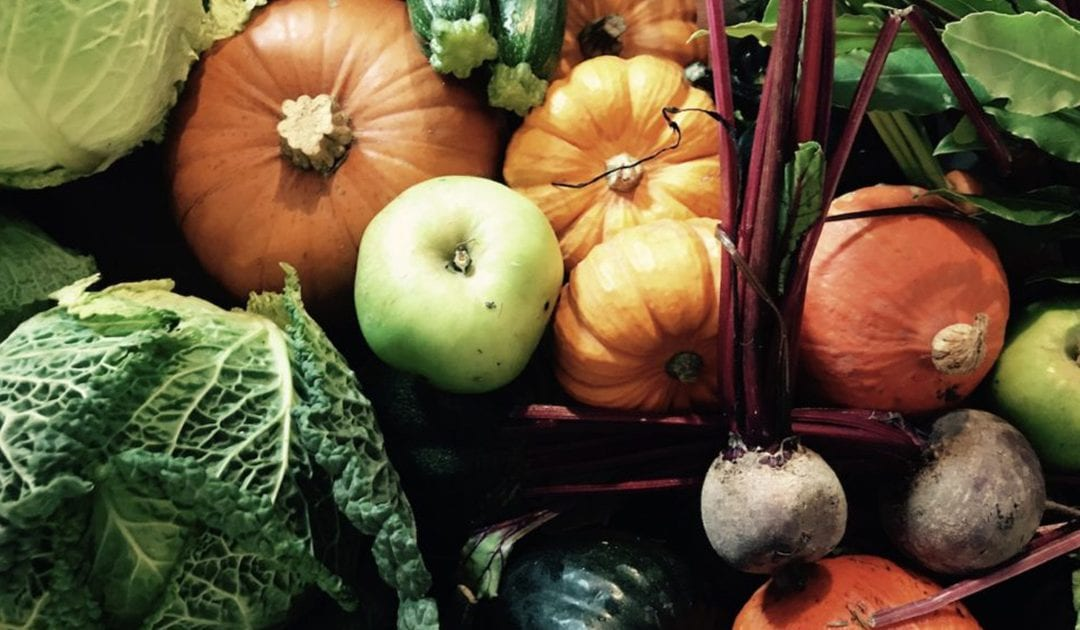 Celebration of Autumn with the Great British Food Fortnight!