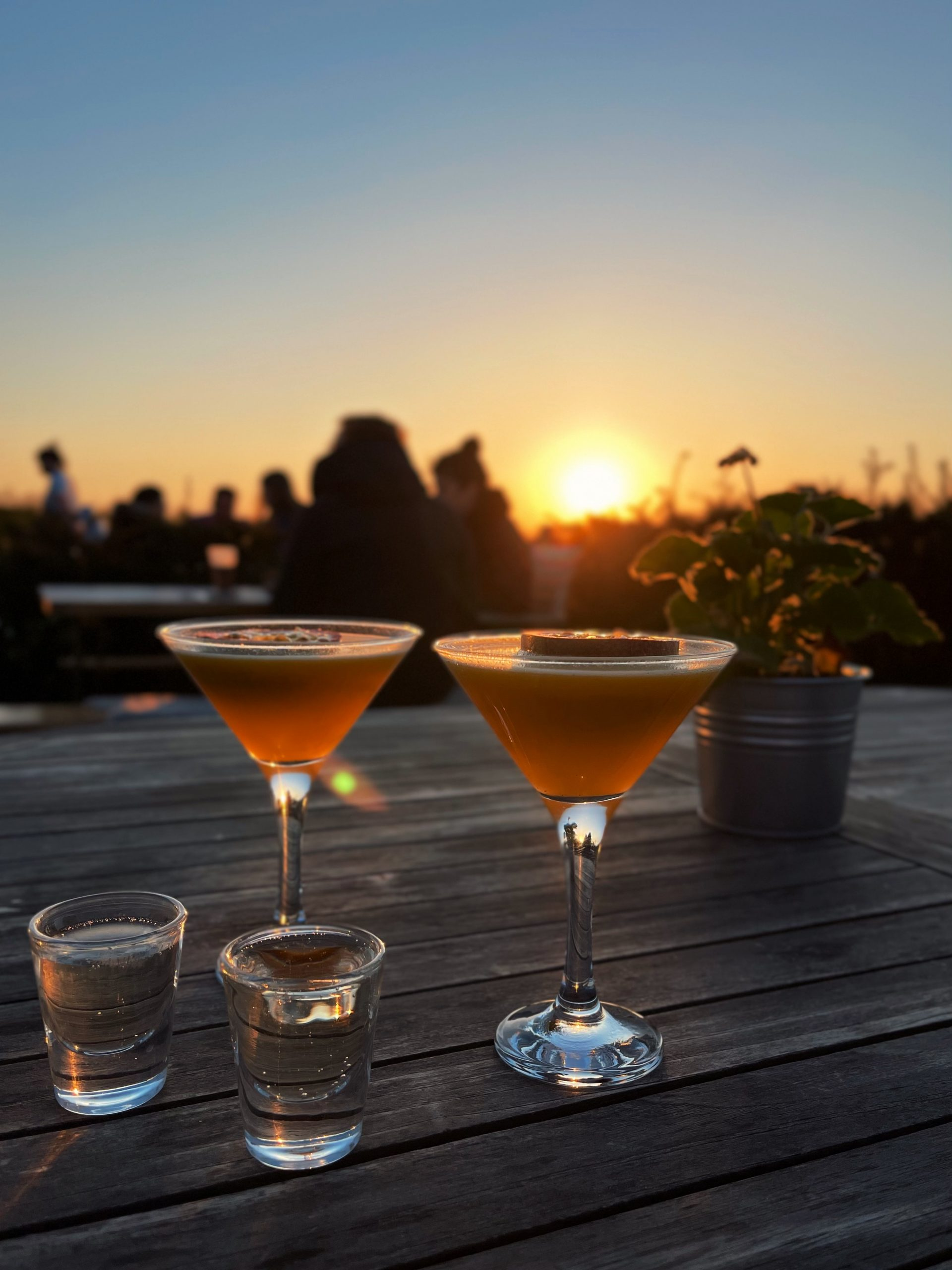 Summer-Sundays-Cocktails-At-Primrose-Hill-Farm-by-The-Kitchen-and-Co